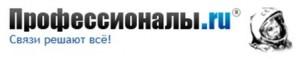 Логотип Профессионалов